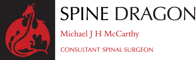 Spine Dragon site logo: Michael J H McCarthy, Consultant Spinal Surgeon